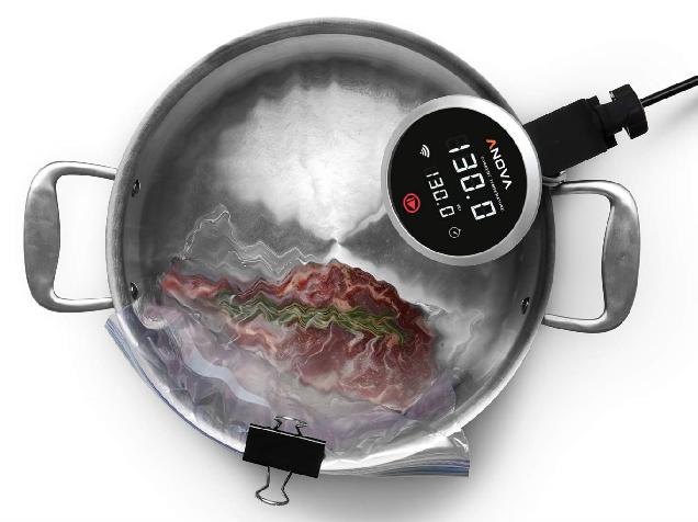 Anova Precision Cooker